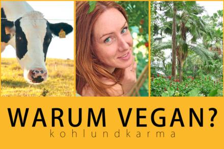 warum vegan? | kohlundkarma